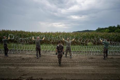 Hungría levanta valla con púas dobles en los 175 kilómetros que tiene de frontera con Serbia para evitar inmigrantes ilegales.