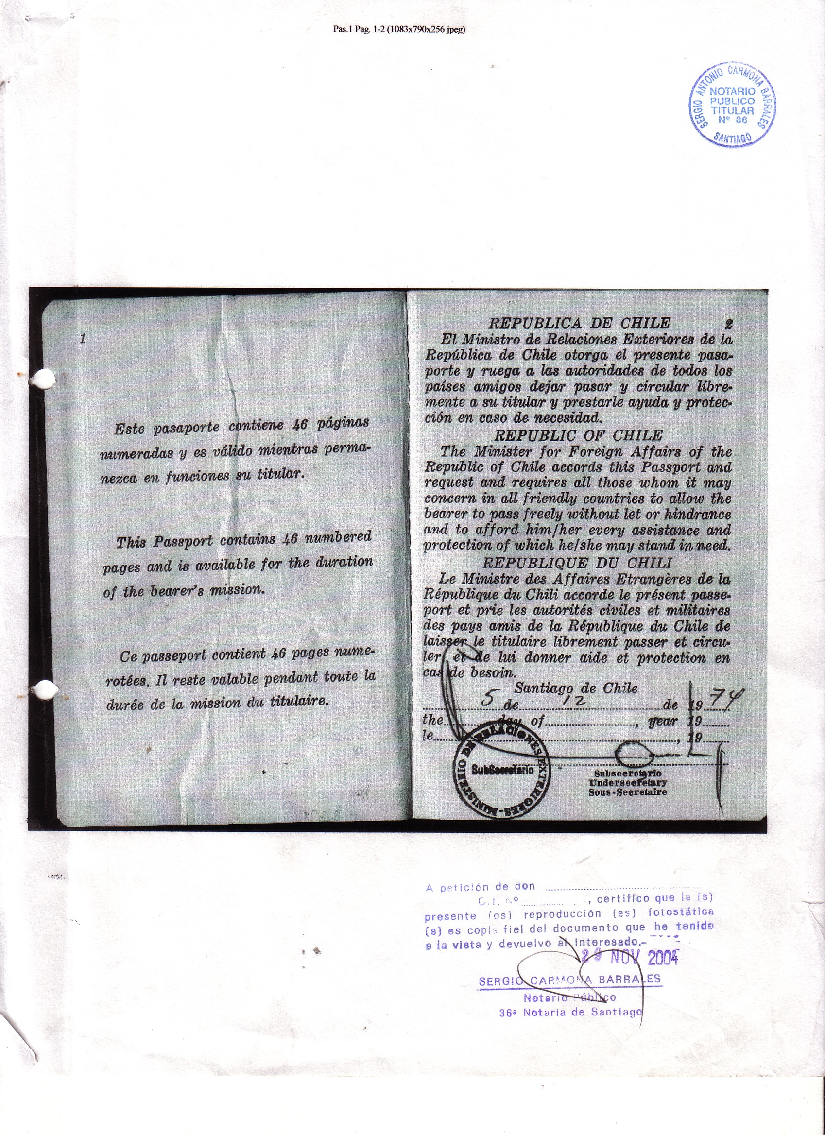 Pasaporte 1