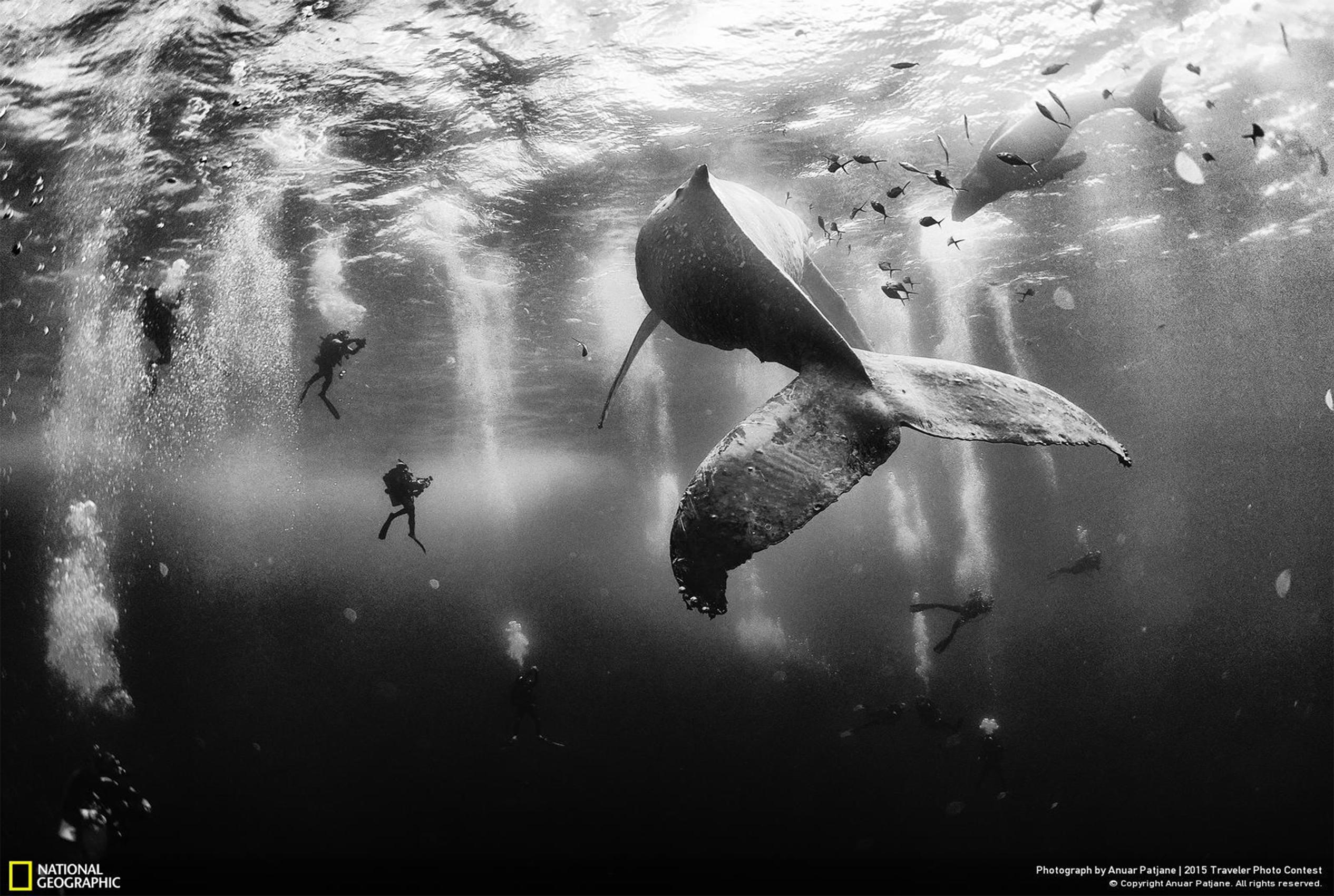 Mexicano ganó Concurso de fotos viajeros de National Geographic 2015