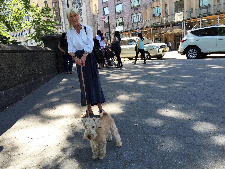 Vida de perros en Nueva York