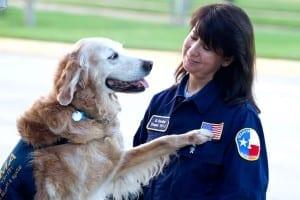 perro-rescate-11s-superviviente-16-cumpleanos-bretagne-1