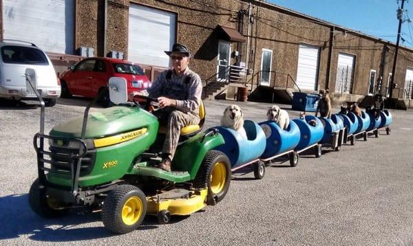 tren-tractor-perros-callejeros-rescatados-eugene-bostick-4