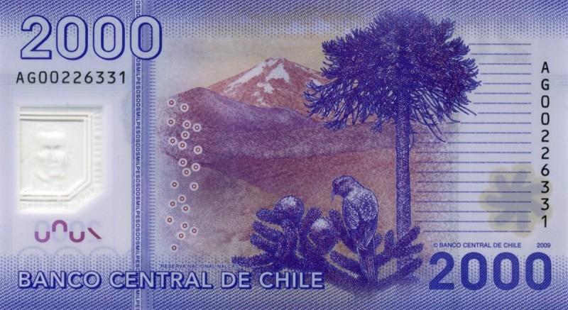 Coletazo de China: Peso chileno cae al abismo junto a monedas de Colombia y Brasil