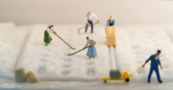 fotos-personas-miniatura-poy-13