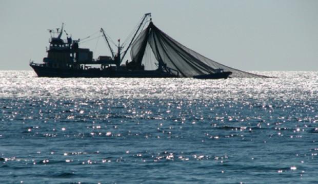 Emplazan a Sernapesca para dar nombres de seis industrias pesqueras investigadas