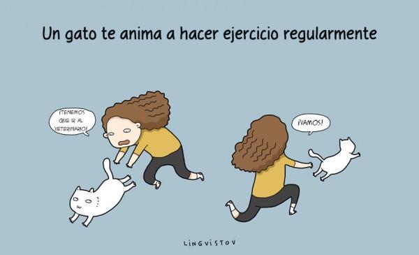 ilustraciones-beneficios-tener-gato-lingvistov-17