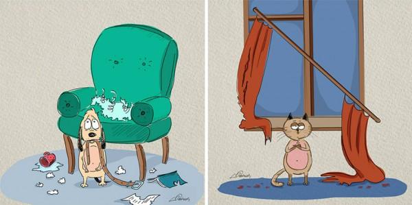 ilustraciones-diferencias-gatos-perros-bird-born-2