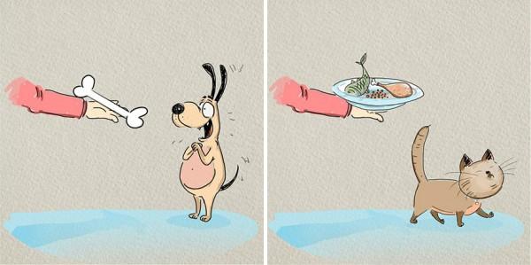 ilustraciones-diferencias-gatos-perros-bird-born-6