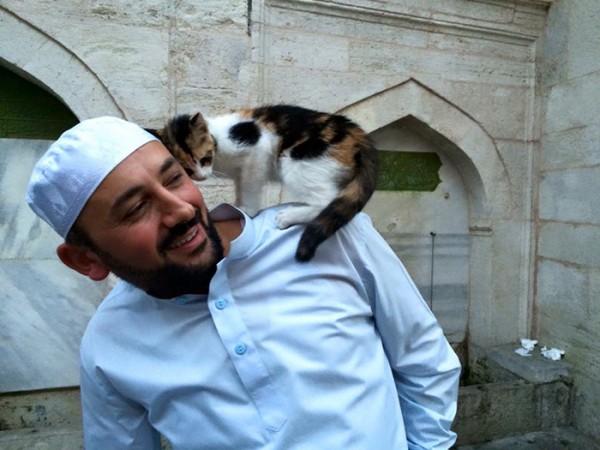 mezquita-gatos-callejeros-mustafa-efe-estambul-4