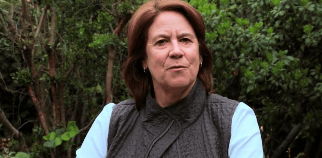 """Mariana al ataque y reenciende la polémica DC-PC con burlesca columna titulada """"El Plan"""""""