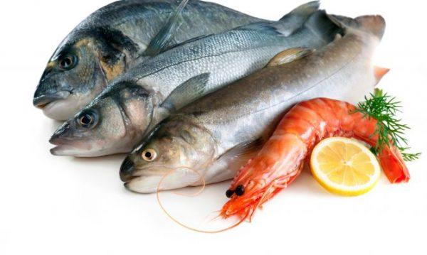 consejos-pescados-xl-668x400x80xX