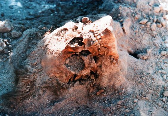 Caravana de la Muerte en Copiapó: las imágenes hablan por sí solas
