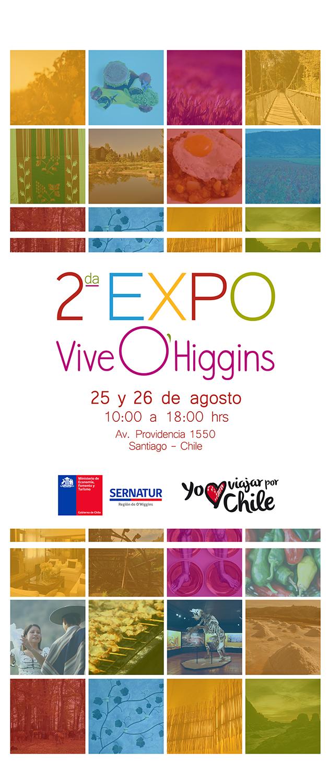 Expo OHiggins - Afiche 2