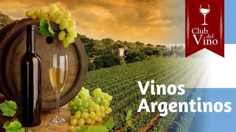 Argentina le competirá al vino chileno y se propone exportar vinos por US$ 1.400 millones
