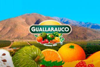 Lo nuevo de Guallarauco viene en envase individual