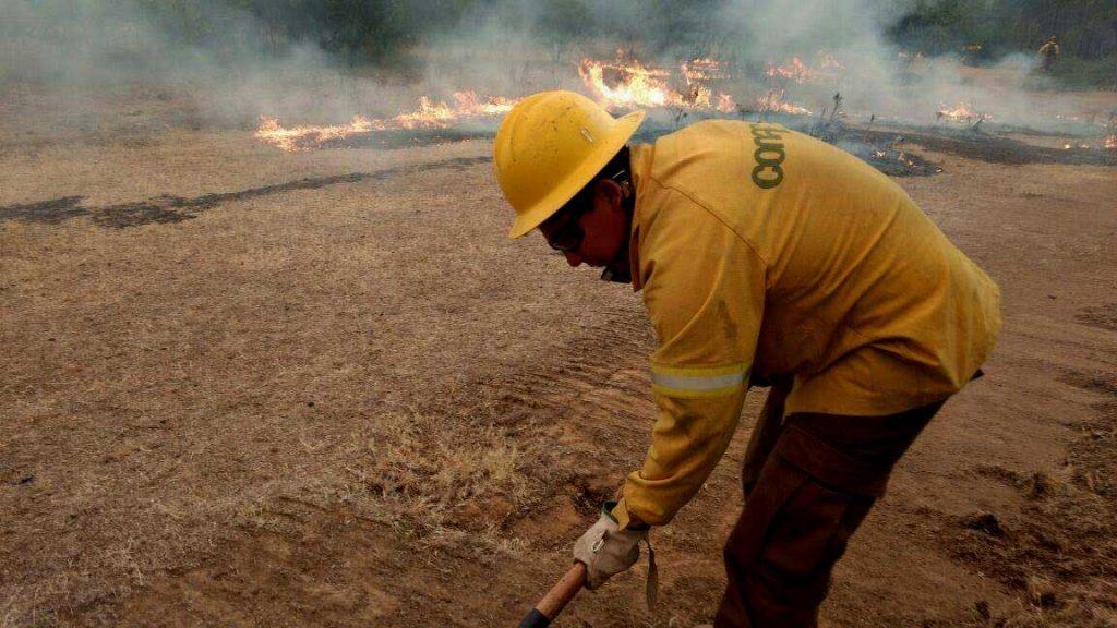 Incendios forestales: Chile pide apoyo internacional para combatir siniestros