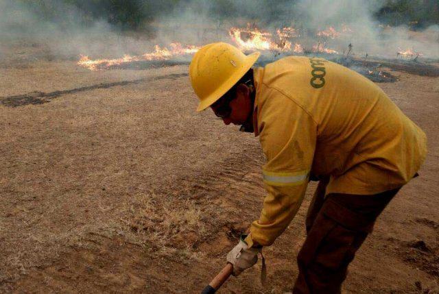 Parte diario ONEMI: 26 incendios forestales en todo Chile