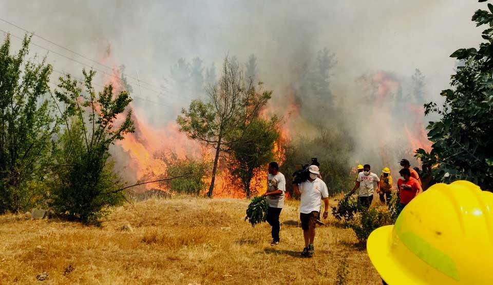 Ejército apoya combate de incendios forestales en regiones de O'Higgins y Del Maule