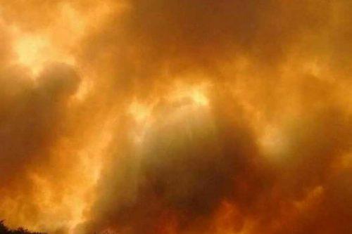Argentina: Más de 1 millón de hectáreas quemadas por incendios forestales