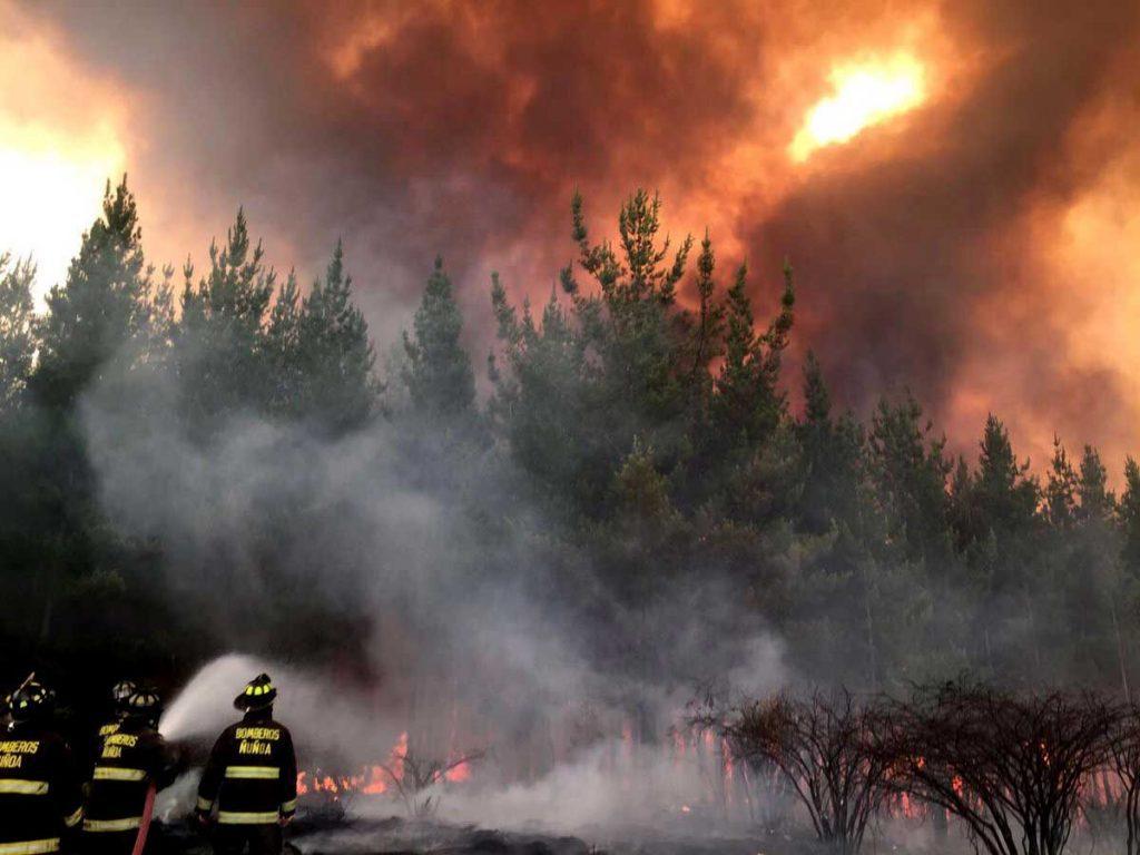Desastre Nacional por incendios forestales: Aumentan a 178 mil 918 las hectáreas destruidas por el fuego