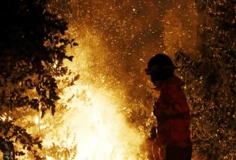 Último balance de Onemi: 37 incendios activos y más de 80.000 hectáreas afectadas