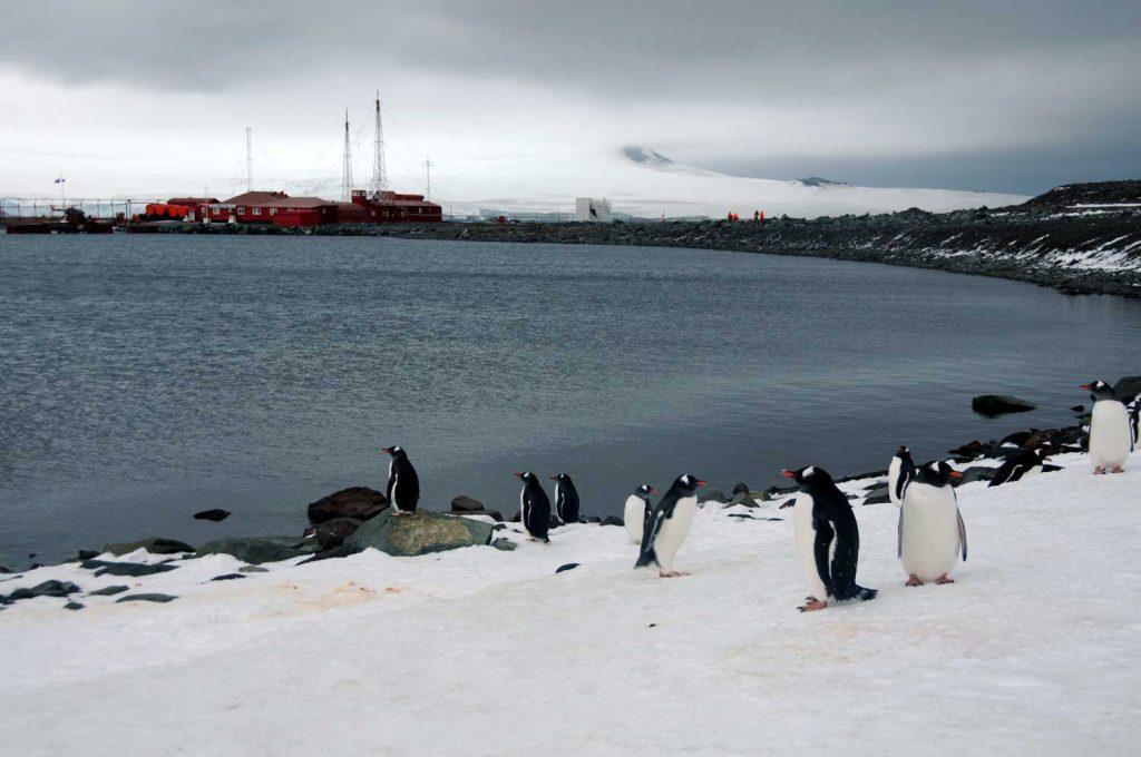 Base chilena en la Antártica cumple 70 años