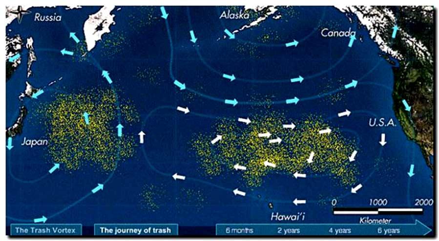 ONU alerta: Los océanos se deterioran rápidamente