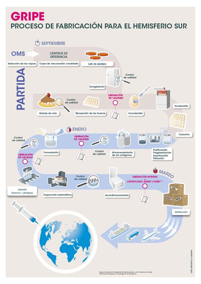 Infografia produccion gripe