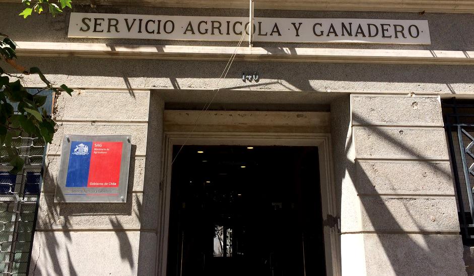 Chile cede a amenazas de Brasil y acotaría restricción de importación de carne adulterada a los 21 frigoríficos involucrados