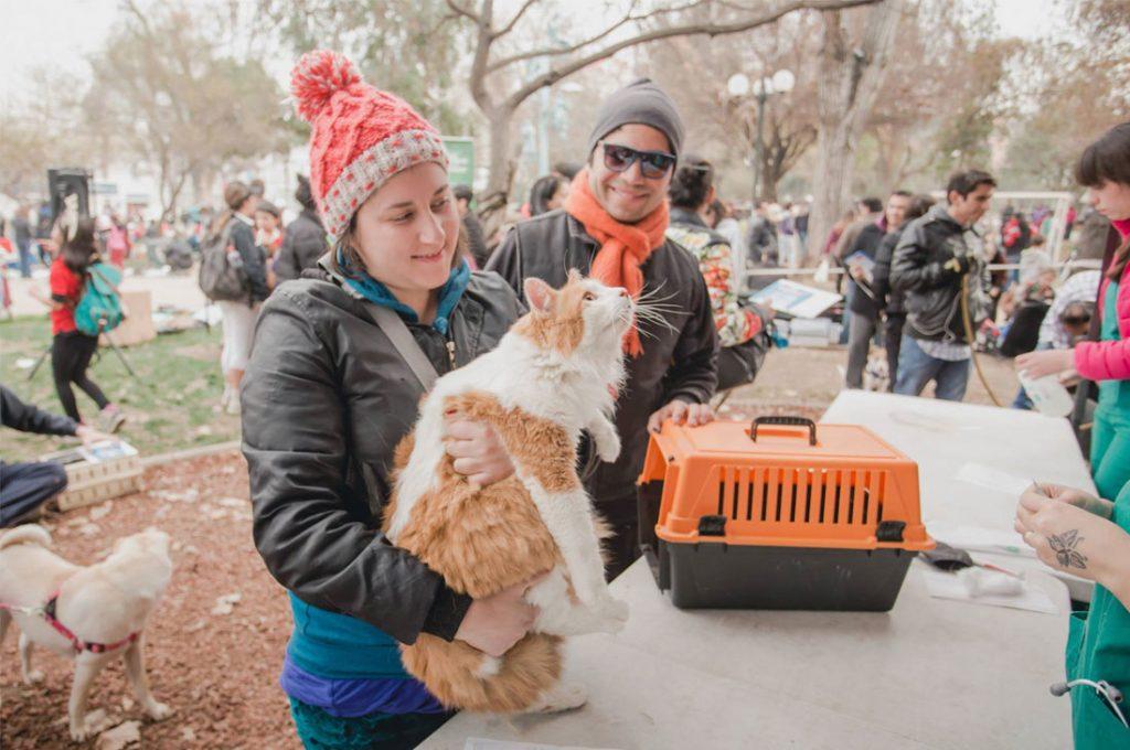 Operativo de Tenencia de mascotas llega este sábado a Plaza La Alcaldesa