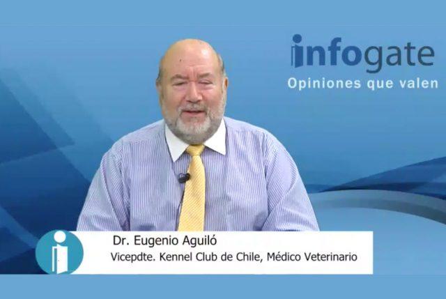 El Dr. Eugenio Aguiló opina de…