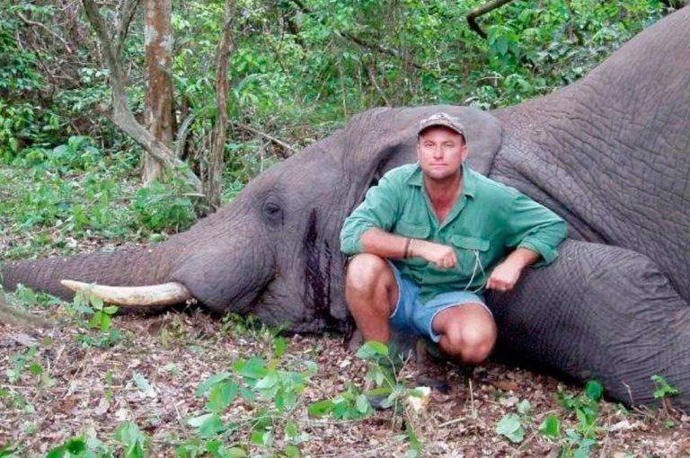 Cazador muere durante cacería a manos de un elefante en Africa