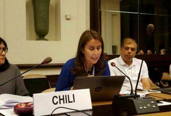 Directora del INE expuso sobre el Censo 2017 ante Comité de Estadísticas de la OCDE
