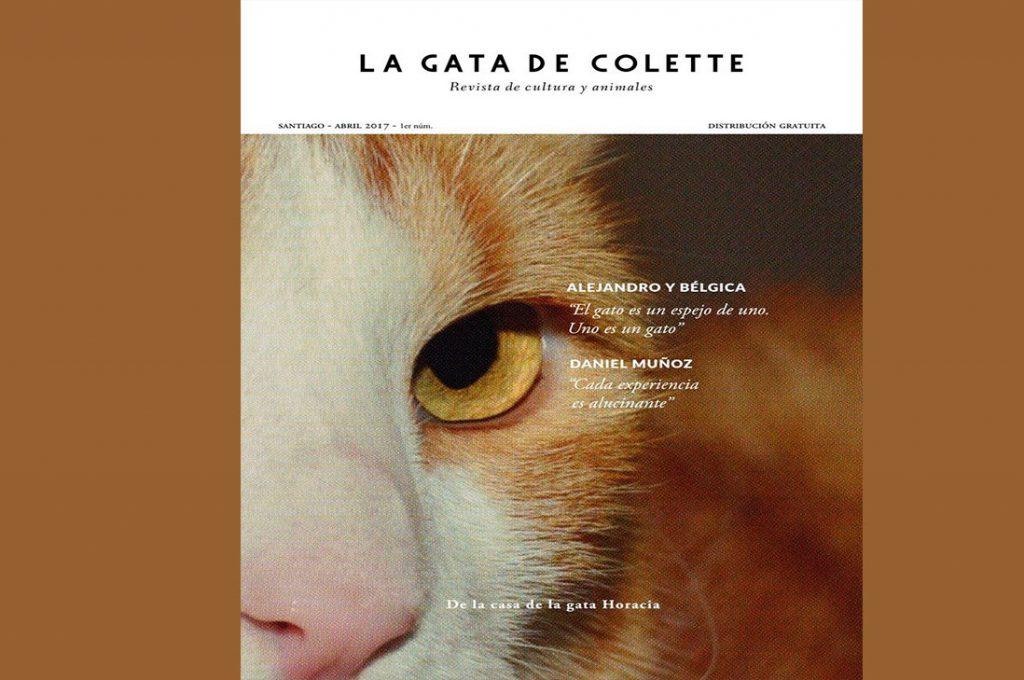 Lanzan primera revista animalista en Chile