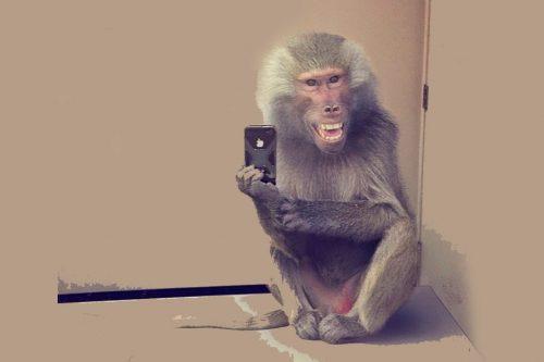 Consejos básicos para hacerse un buena selfie