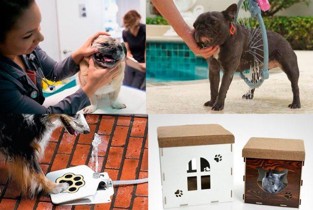 Productos para cuidado de nuestras mascotas