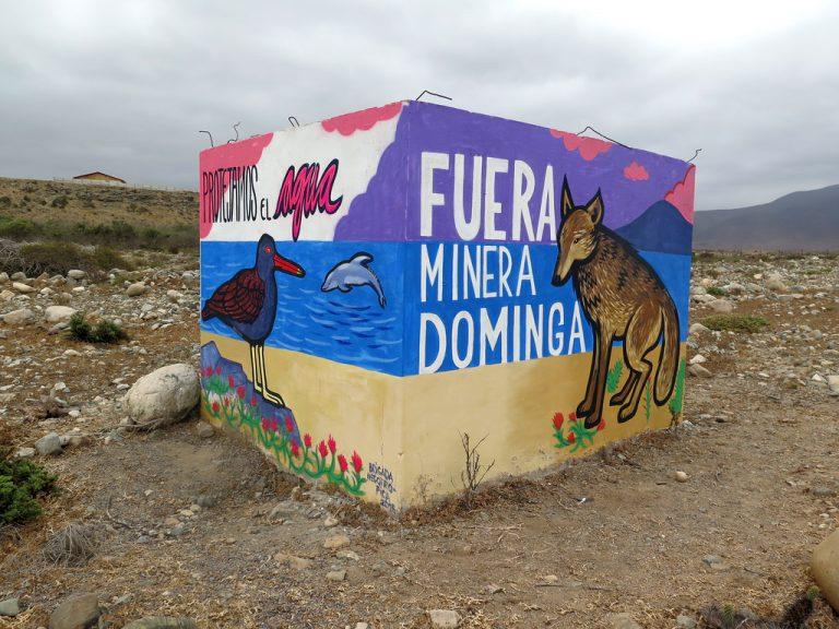 17 ONG's ambientalistas crean mega alianza para enfrentar los proyectos Dominga y Cruz Grande