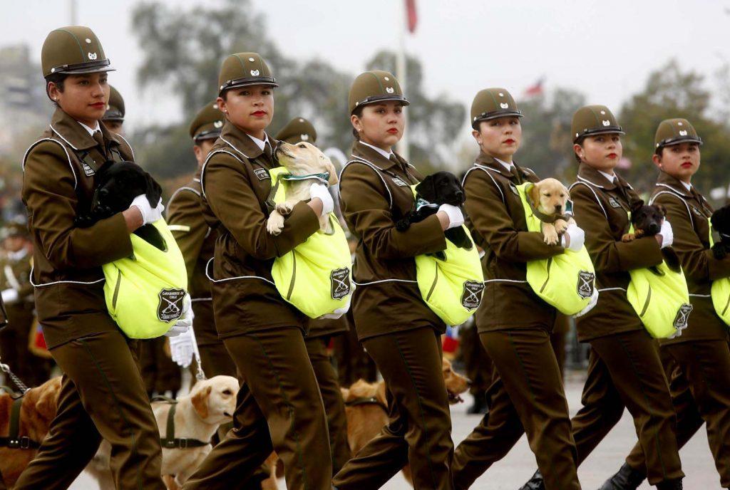 """Ministerio de Defensa destaca """"Capacidad Polivalente """" de las FFAA mostrada en Parada Militar 2017"""