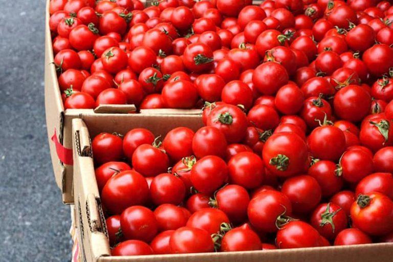 IPC de agosto llega al 0,2% marcado por el alza de los tomates y verduras de la estación