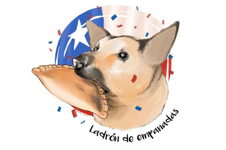 """Andacollinos no quieren que el """"Perro ladrón de empanadas"""" sea adoptado"""