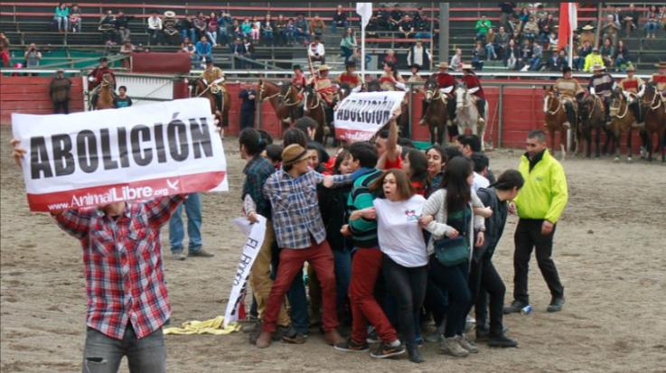 """Activistas pro animales """"funan"""" actividad de campaña de José Antonio Kast y disparan contra el rodeo"""