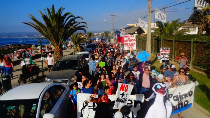 En pleno verano la comunidad algarrobina marchó en defensa de los pingüinos y exigieron al ministro de Defensa que caduque la concesión a la COfradía a quienes responsabilizan por la brutal e inaceptable matanza de pingüinos Humboldt.