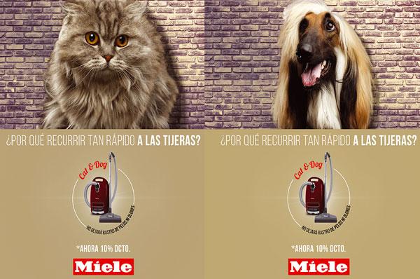 mascotas051001