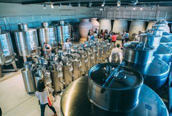 Se inauguró primer centro de investigación e innovación en vino y oliva para pequeños productores