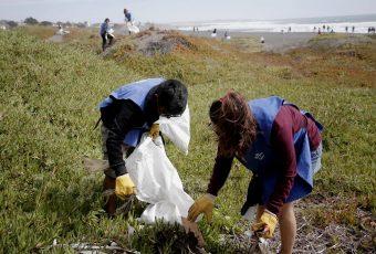Pichilemu en guerra contra el plástico en las playas: Se recolectó más de media tonelada de microplástico