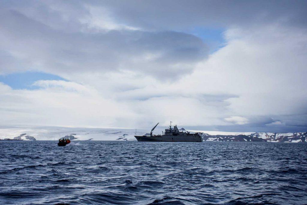 Contaminación en la Antártica: Erizos y bivalvos antárticos sufren los daños causados por los nanoplásticos
