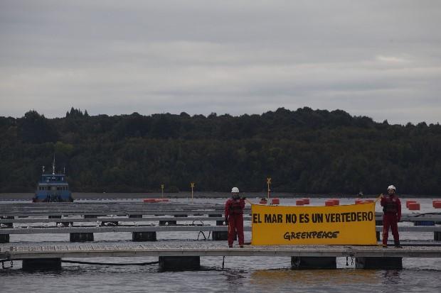 """Greenpeace ante avance de la Marea Roja en la Patagonia advierte: """"Estamos a las puertas de una crisis social y ambiental incluso mayor a la de Chiloé en 2016"""""""