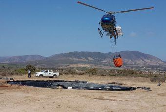 Privados se unen a CONAF y bomberos para apagar incendios en IV y V región