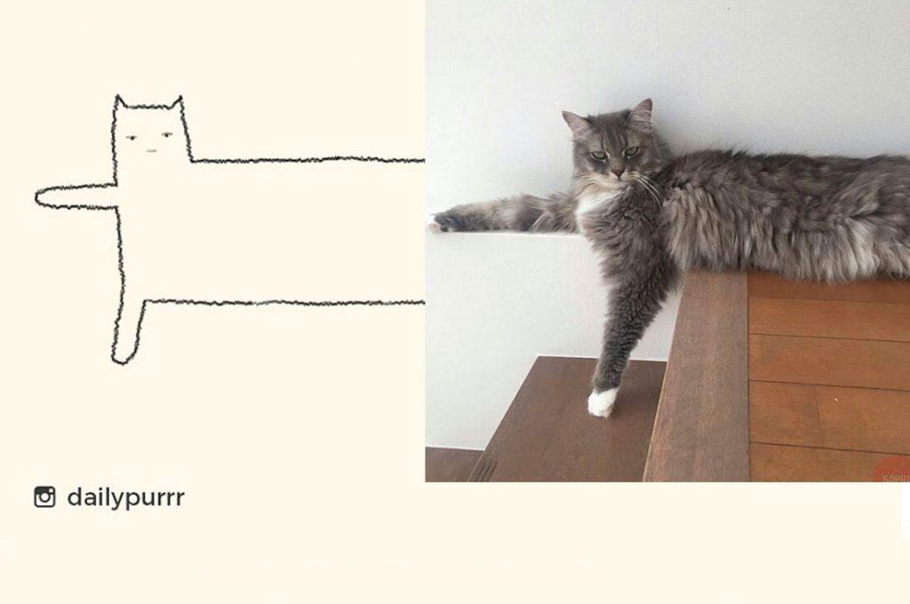 Absurdos dibujos de gatos que hicieron reír por su precisión