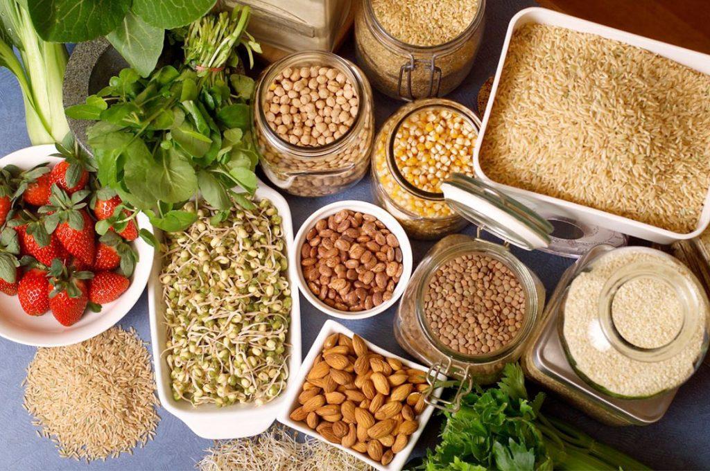 El poder de la Proteina vegetal